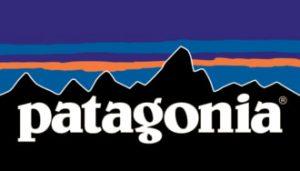 patagonia-logo-2-654-330x188-c-default_orig